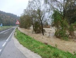 Mislinja, Pameče (5. 11. 2012)